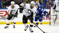 Mit Schwung aus der NHL: Tom Kühnhackl