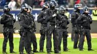 Im Stadion hatte die Polizei die Lage schnell wieder im Griff.