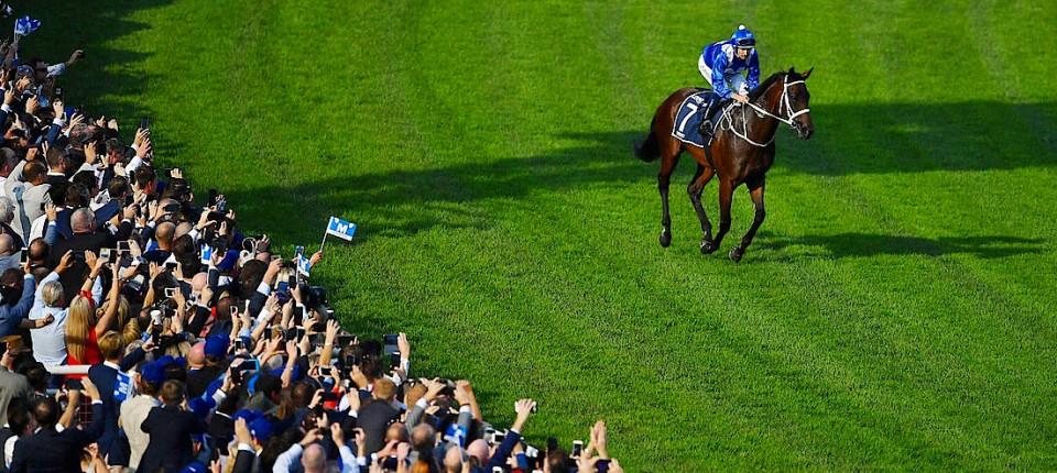 Ein stilvoller Abschied vom Millionen-Pferd