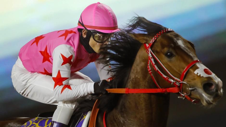 Dem schnellsten Pferd und Reiter winken Ruhm, Ehre und ein Millionengewinn: hier der Japaner Tosaki mit Pink Kamehameha beim Saudi Cup