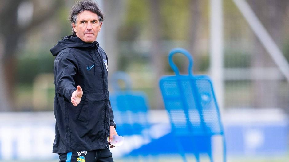 Labbadia soll bei Hertha für Erfolg sorgen