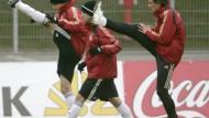 Frings hofft, Ribery träumt, Hiddink spricht