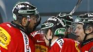Agassi fordert - Krasniqi verzichtet - Schweiz gewinnt