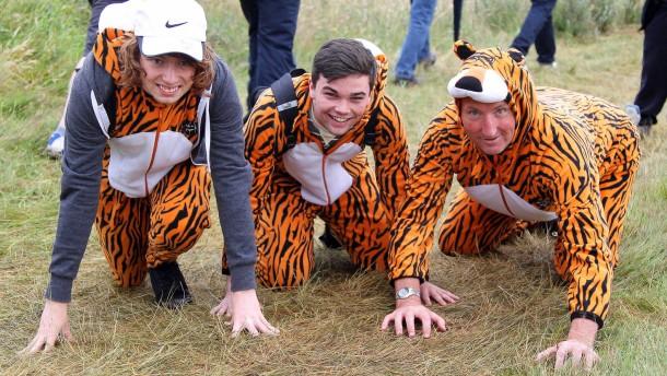 Der Tiger ist auf dem Sprung