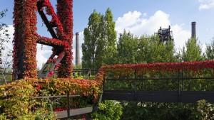 In Duisburg wächst rot-grün zusammen