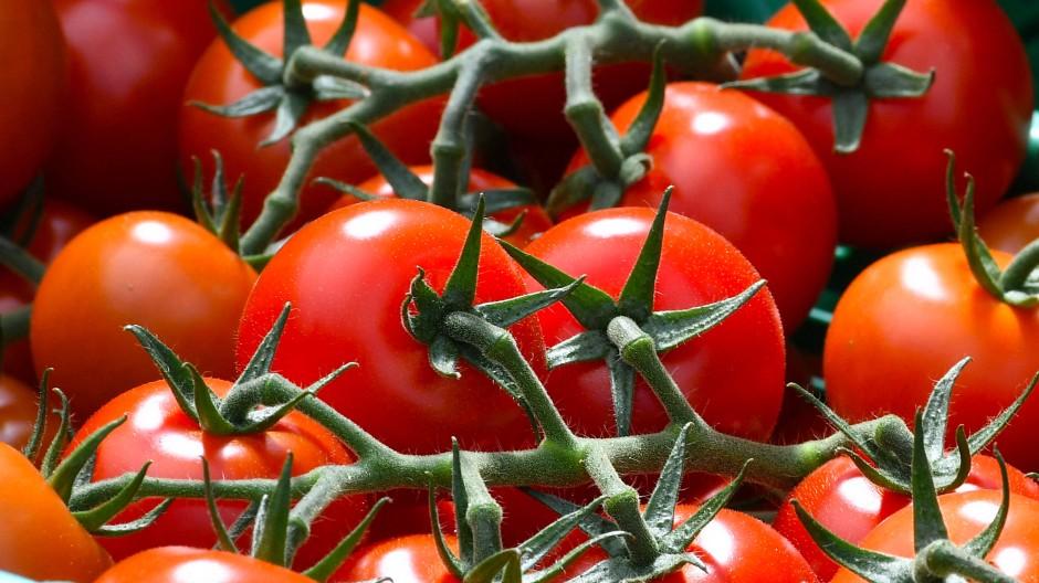 Eine handvoll Tomaten ist fast schon alles, was man für den Ketchup braucht. Welcher gut ist, erfahren Sie mit einem Klick aufs Bild.