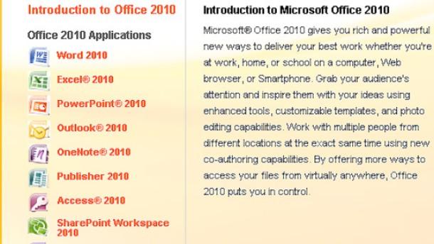 Office 2010 mit Webanwendungen