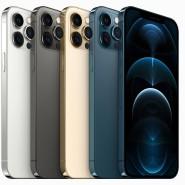 Das 12 Pro Max von Apple