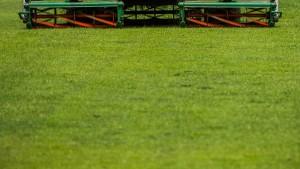 So pflegen Sie ihren Rasen richtig