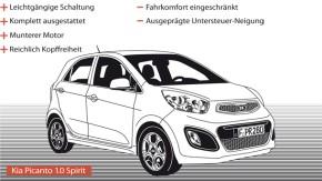 Infografik / Fahrtbericht / Kia Picanto