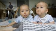 Wer passt auf die Babys auf?