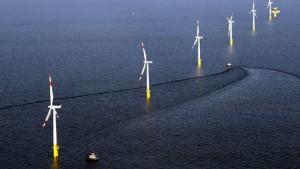 Naturschutzamt bremst Offshore-Windstrom