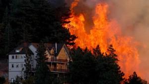 Brände treffen auch deutsche Wirtschaft