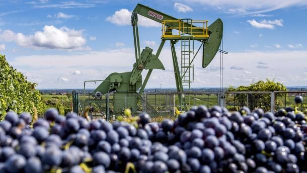 Frisches Öl aus deutschen Landen