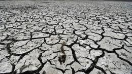 Rendite mit Klimaschutz