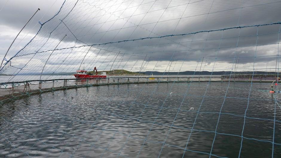Lachsfarm in Norwegen.