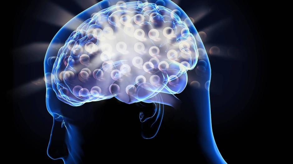 Inspiration für das Deep Learning: das menschliche Gehirn