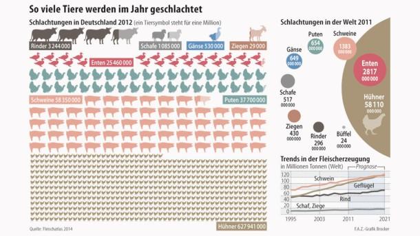 Infografik / So viele Tiere werden im Jahr geschlachtet