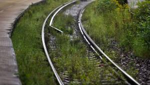 Deutsche Bahn will Glyphosateinsatz halbieren