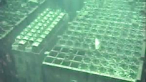 Kühlsysteme in Fukushima laufen teils wieder