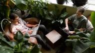 Bequem und im Grünen arbeiten: Google-Büro in Zürich in der Schweiz.