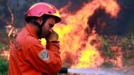Brand noch nicht gelöscht: Portugals Feuerwehr im Löscheinsatz in den Caramulo-Bergen