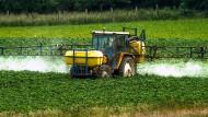 Dürfen Landwirte auch künftig Glyphosat verwenden? Die EU entscheidet darüber noch in diesem Jahr.