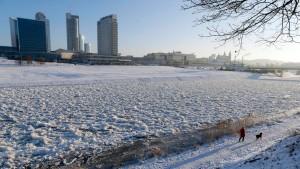 Litauen will 2015 den Euro einführen