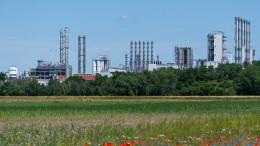 Die Fabrik wird grün, der Staat zahlt