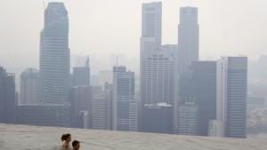 Die Palmölindustrie brennt wieder Wälder ab