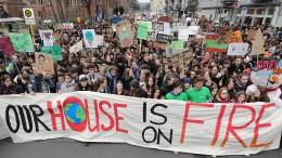 Das fordern die streikenden Schüler
