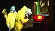 Dritter Fall von Vogelgrippe