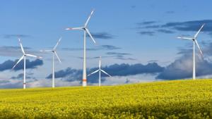 Stromverbraucher nutzen so viel Ökostrom wie nie
