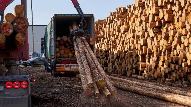 Deutsches Holz für die Welt