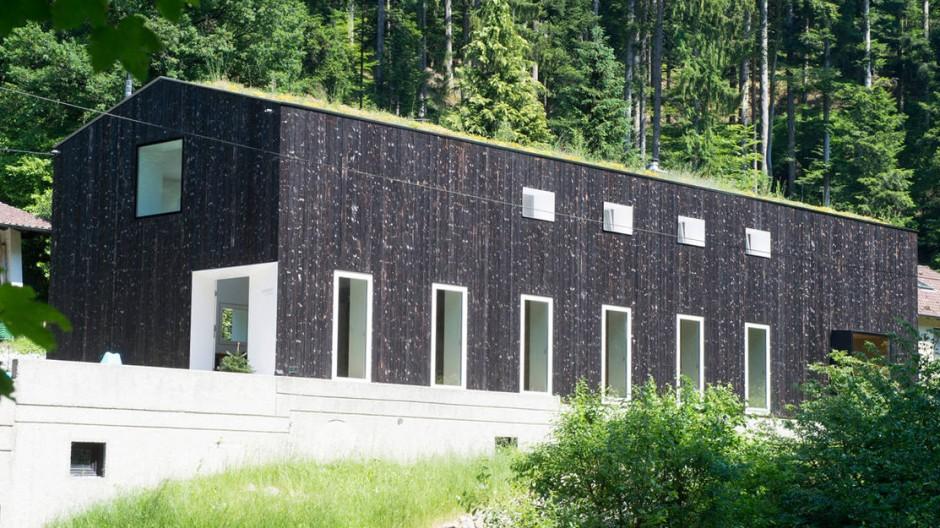 Schwarz wie der Stamm der Tanne, grün wie die Zweige: Fassade und Dach greifen die Farben des umliegenden Waldes auf.
