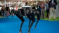 """Der Roboterhund von Boston Dynamics samt seinem """"Herrchen"""" Marc Raibert beeindruckten die Besucher der Cebit."""