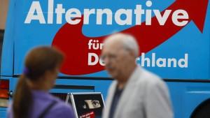 Mainzer Forscher auf den Spuren des Populismus