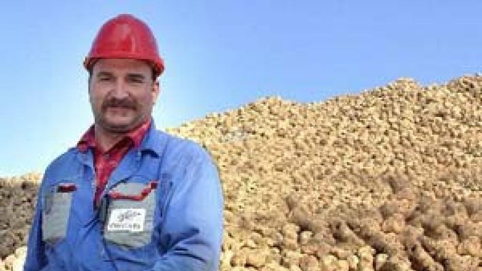 Zuckerrüben-Bauer mit Ernte