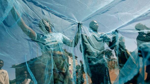 Impfstoff gegen Malaria