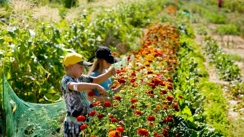 Gärtnern kann auch schon Kindern Freude machen.