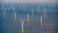 Auf dem Meer bläst der Wind verlässlicher als an Land.
