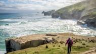 Wandern in Neuseeland ist traumhaft. Hart arbeiten sollen die Mitarbeiter aber zwischendurch bitteschön auch noch!