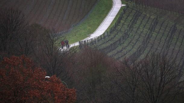 Wie Luftwirbel im Weinberg dem Frost ein Schnippchen schlagen