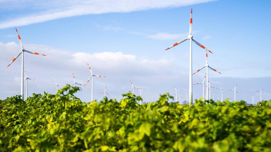 Windräder in Niedersachsen: Die Ökostromförderung nach dem EEG ist und bleibt umstritten.