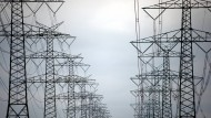 Ein deutscher Durchschnittshaushalt zahlt im Jahr rund 250 Euro allein für die Stromnetze.
