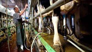 Karrieretipps vom Bauernhof