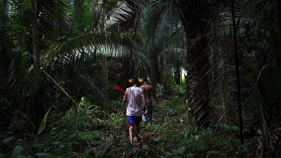 Dieses von Amnesty International zur Verfügung gestellte Bild zeigt Indigene auf einem Weg, der von Eindringlingen im Wald gebahnt wurde.