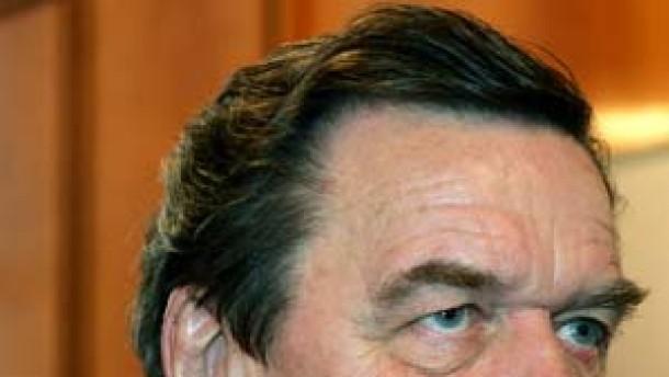 Empörung über Schröders neuen Job