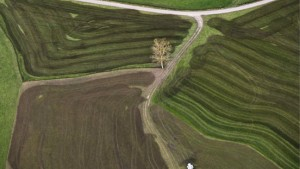 Bauernland in Alteigentümerhand