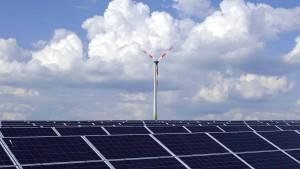 Solarbranche wächst trotz Subventionskürzung weiter